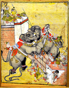 28_Rao Surjan watches elephant fight